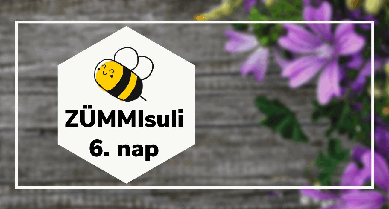 ZÜMMisuli 6.nap – Méhboldogító virágok